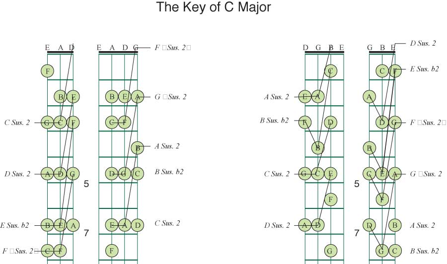 C Sus Guitar Chord Image collections - guitar chords finger placement